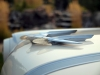 1956 Pontiac Wagon - Hood Ornament View
