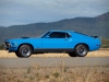 1970 Mustang Mach 1 Fastback - Side View
