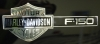 2001 Ford F-150 Harley Davidson Edition Pick Up - Emblem View