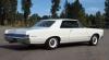 1965 Pontiac GTO - Back/Side View