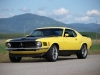 1970 Ford Mustang Fastback - Front/Side View